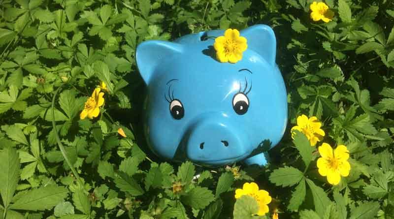 Sparen mit kostenlosen Angeboten, Gratis, kostenlos und umsonst, Bild zu den Tipps zum Geld sparen - Sparschwein in einer Blumenwiese